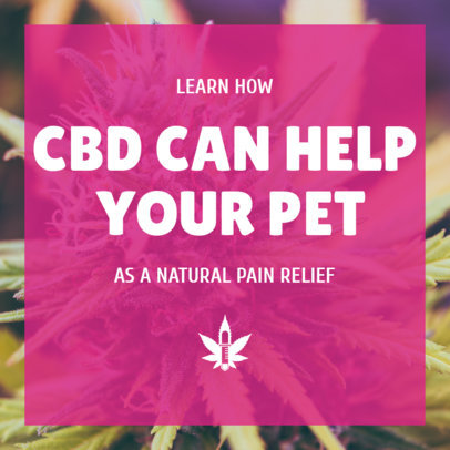 Instagram Post Maker About CBD for Pets' Pain Relief 1891f