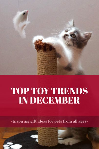 Pinterest Pin Maker for a Post About Pet Toys 2122a