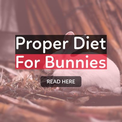 Banner Creator for Content About Pet Nutrition 2124e
