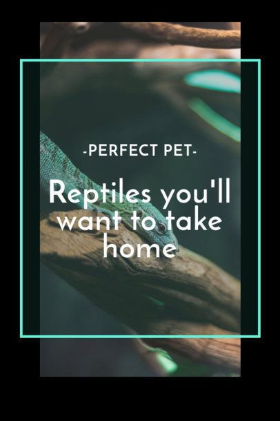 Pinterest Pin Maker for Reptile Pet Owners 2150d