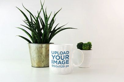 11 oz Coffee Mug Mockup Featuring Small Indoor Plants 2953-el1