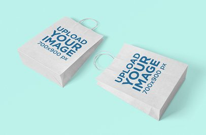Mockup of Two Paper Bags Lying on a Plain Surface 3464-el1