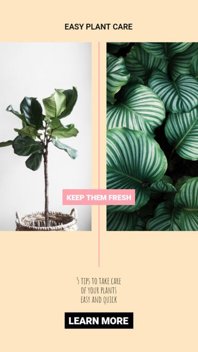 Stylish Instagram Story Creator For Plant Enthusiasts 805b-el1