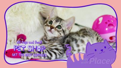 Slideshow Maker Featuring Cute Animated Kitten Graphics 1852