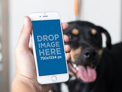 Mockup of an iPhone in Portrait Position With a Dog in the Background 12790