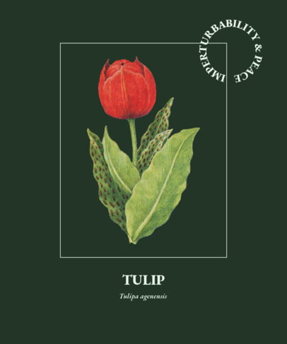 T-Shirt Design Generator Featuring a Red Tulip Illustration 1658b-el1