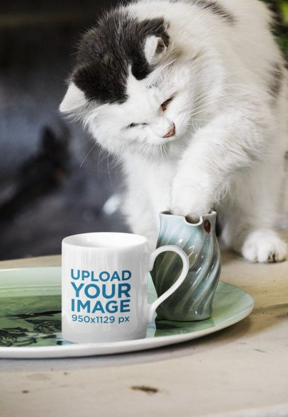 11 oz Coffee Mug Mockup Featuring a Curious Cat 43558-r-el2