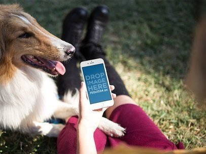 iPhone Mockup Featuring a Woman Sitting Next to a Dog in the Park 12805