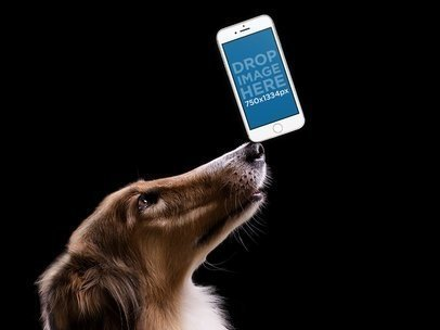 Mockup of a Dog Holding an iPhone in Portrait Position 12951